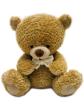 TB10001c - AEIOU TeddyBears (10')