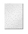 MST Marketing Pinhole Gypsum Ceiling Tiles