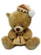 TB10001h - AEIOU TeddyBears (10')
