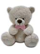 TB10002p - AEIOU TeddyBears (10')