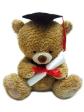 TB10001g - AEIOU TeddyBears (10')