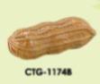 Clay Coin Box - Groundnut