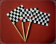 Racing Theme Party Supply Toothpick Flag Food Pick Design 1