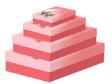10 x Decorative Gift Boxes Medium Size (CB74)