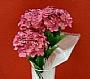 HM HYDRANGEA FLOWER BUSH BUD 3
