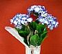 HM HYDRANGEA FLOWER BUSH BUD 2