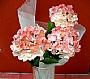 HM HYDRANGEA FLOWER BUSH BUD